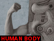 human body video thumbnail